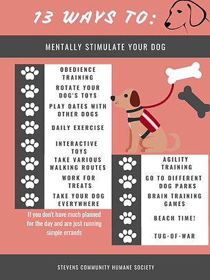 Dog Stimulation Poster.png
