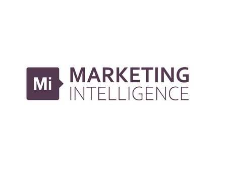 Cesta k Marketingintelligence.io