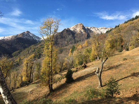 Retreat Tessin mit Susanne, November 2017