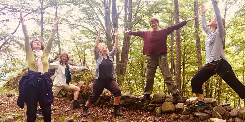 Gruppenkurs Ü55-Yoga (für Menschen ab 55)