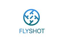 flyshot.png