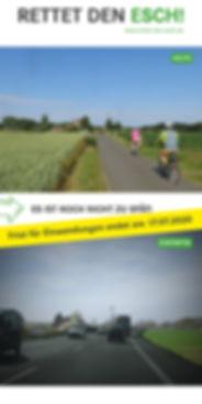 2020_cover_flyer_rettedenesch.jpg