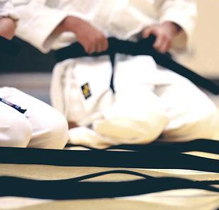 martial arts, taekwondo, kickkboxing, fitness