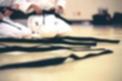 Karate Black Belt