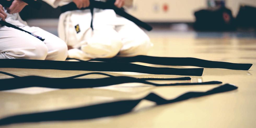 Pagoda Ryu Martial Arts Seminar