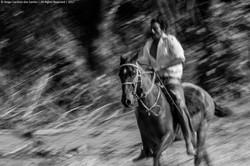 INdigena_cavaleiro
