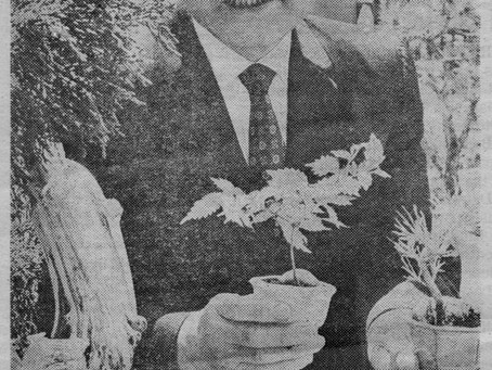 A Tale of Two Clubs: History of the Rocky Mountain Bonsai Society