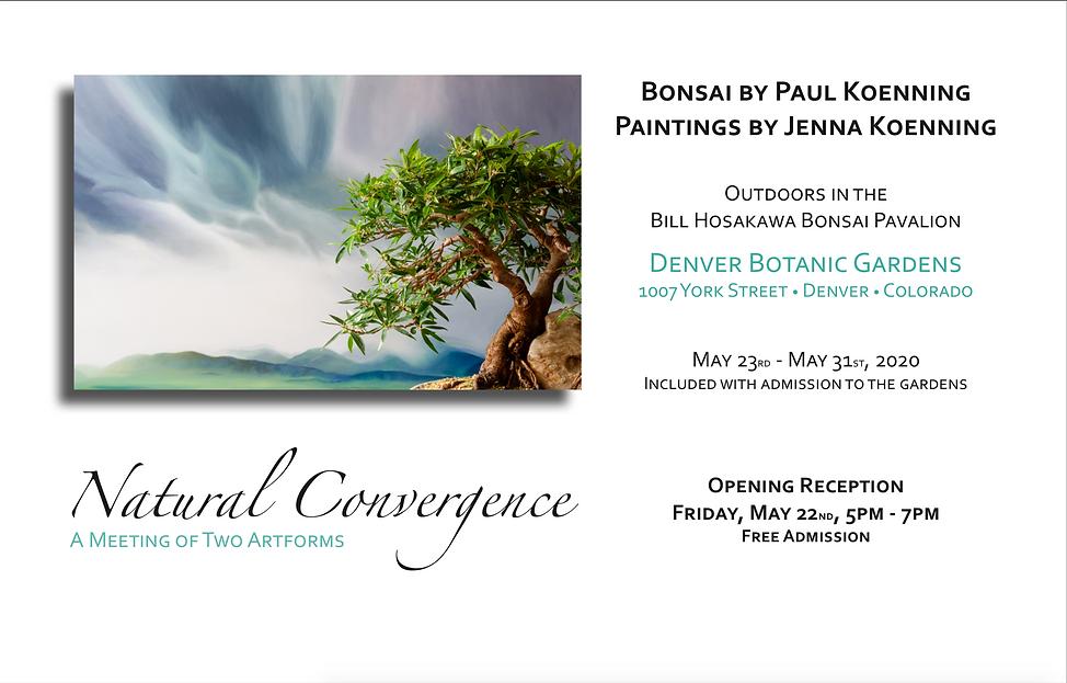 Natural convergance.png