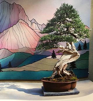 Kataoka Juniper PBM Natives Heritage.jpe