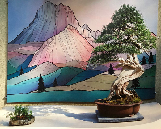 Rocky Mountain Juniper #1