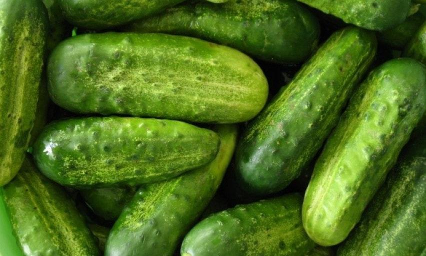 Pickling Cucumber - $2LB.