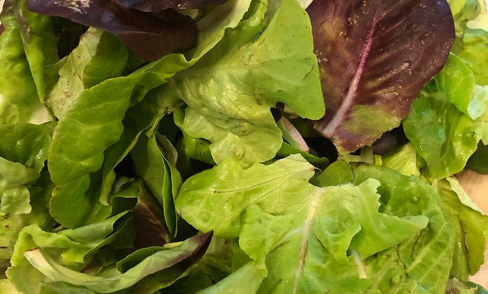 Salad Mix - $4 per bag