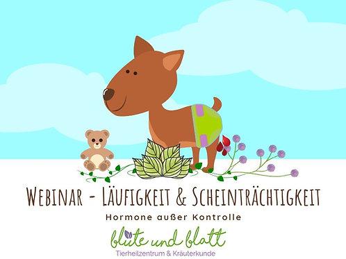 """""""Läufigkeit & Scheinträchtigkeit - Hormone außer Kontrolle"""" inkl. Video und Skri"""