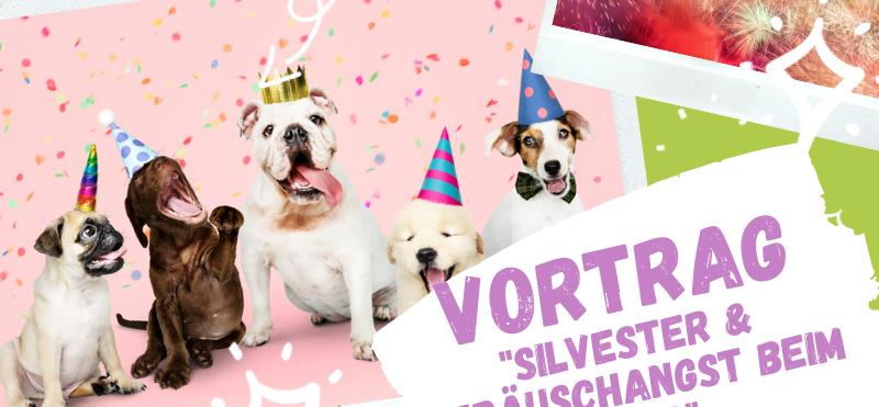 """Vortrag - """"Silvester & Geräuschangst beim Hund"""" (Do. der 29.11.2020)"""
