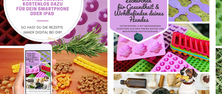 ALL IN ONE SET - BACKMATTEN LECKERCHEN - BUCH (ink. e-Book, Video & Ringbuch)