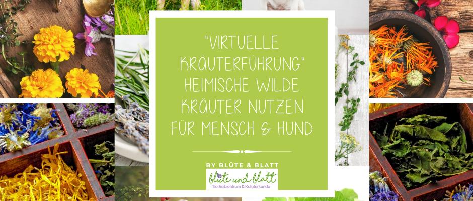 """virtuelle Kräuterführung """"heimische wilde Kräuter nutzen""""für Mensch & Hund"""