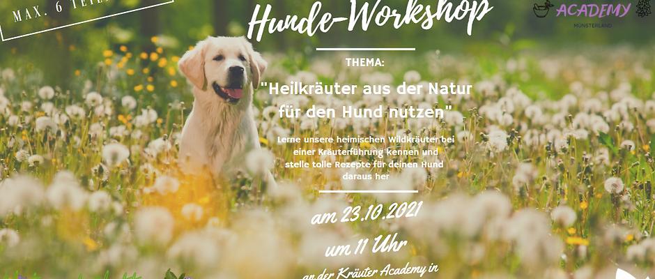 """""""Heilkräuter aus der Natur für den Hund nutzen"""" Kräuterführung  am 23.10.21"""