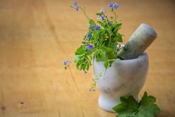 natural-medicine-1426647_960_720.jpg