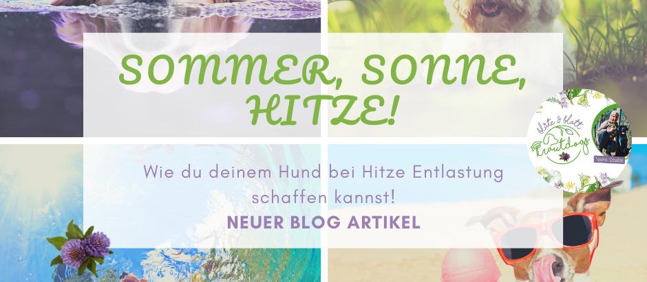 Sommer, Sonne, HITZE!