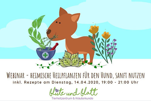 """""""heimische wilde Kräuter für deinen Hund nutzen"""" NEU inkl. Skript, Führungsvideo"""