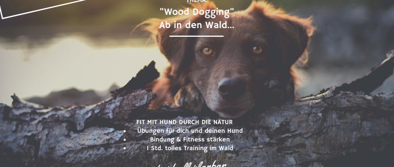 """""""Wood Dogging"""" Ab in den Wald... INDIVIDUELL 1:1 TRAINING"""
