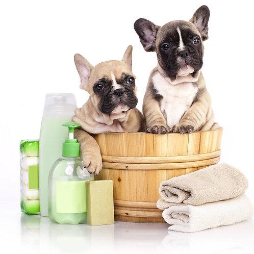"""DIY Hundepflege nachhaltig selbst machen ohne Chemie"" inkl. Rezepte & LERNVIDEO"
