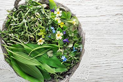 Healthy spring food ingredients. Dandeli