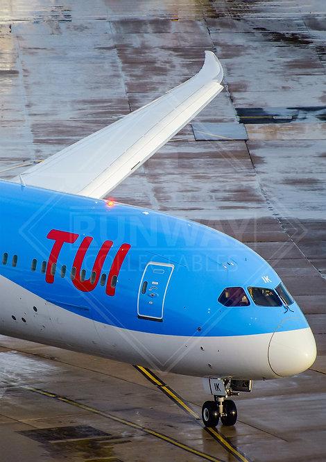 TUI - Boeing 787 Dreamliner - Print