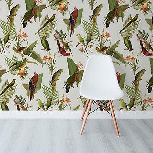 Soil-Parrots-Cream.jpg