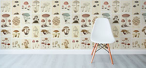 Mushrooms-slider.jpg
