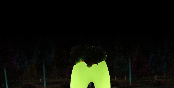 Bình hoa LED phát sáng BH005