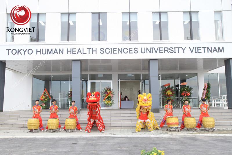 Đội múa lân rồng phục vụ cho sự kiện - Công ty sự kiện Rồng Việt