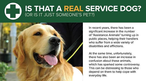 Orvis-Service-Dogs-header-v2.jpg