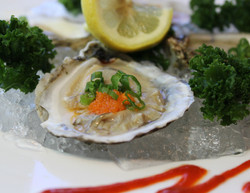 oyster (1 of 1).jpg