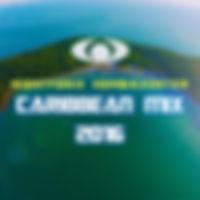NF x HZ Caribbean Mix 2016 Cover.jpg