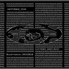 NF ;) Mx 18 Binary Cover.jpg