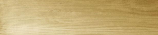 woodheaderbg.jpg