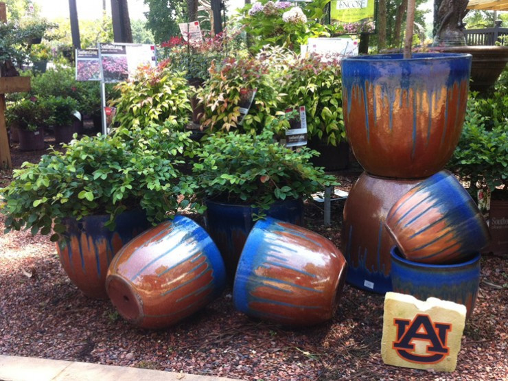 Auburn-container.jpg