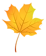 337-3372938_fall-clipart-leaf-pattern-autumn-leaf-vector-png_edited.png