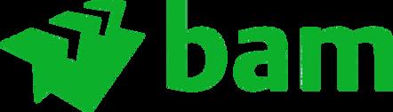 BAM_logo_png.png