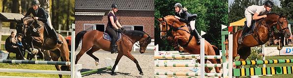 Anna Leßner reiten springreiten in Alsfeld Niederaula