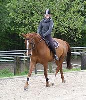 Chiara Pickardt mit Fine bei Dressur reiten