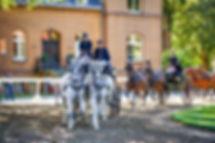 Zweispänner auf dem Landgestüt NRW Warendof vor dem Landstallmeisterhaus
