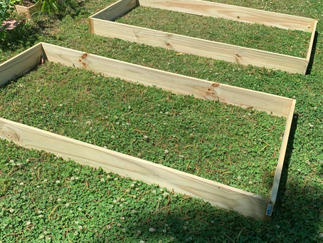 Growth Mindset Gardening: Raised Beds for Beginners