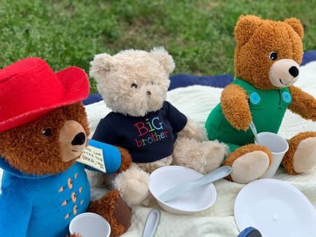Playing Preschool - Unit 7: Teddy Bears