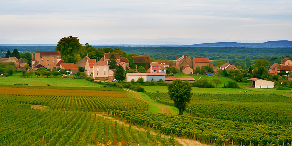 Bourgogne Masterclass Discover the Côte Chalonnaise