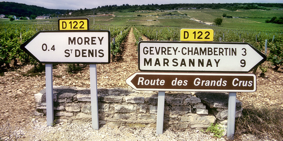 Burgundy Discovery Webinar