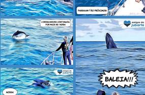 Baleias & Golfinhos