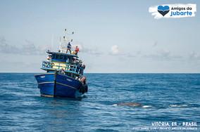 A Importância do Turismo de Observação de Baleias-jubarte