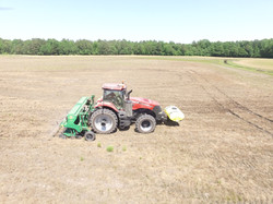 No-till soybean planting
